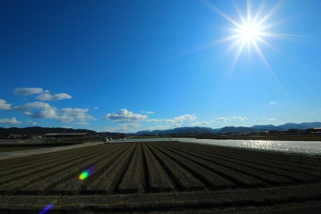 太陽光発電所用の土地